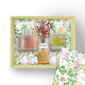 Botanica Gift Set Package – Light Serenity (Corsage Diffuser & Gel Light)